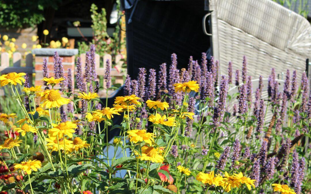 Gartengestaltung in kleinen Gärten